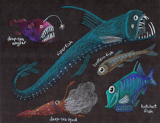 Free coloring pages of deep sea creatures for Deep sea fishes